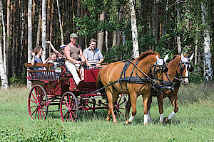 Sächsische Schweiz-Osterzgebirge, Heimkehrerbörse, Familie, Leben, Freizeit, Sport, Reiten, Reitwege, Pferde
