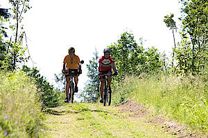 Sächsische Schweiz-Osterzgebirge, Heimkehrerbörse, Familie, Freizeit, Leben, Radfahren, Fahrradfahren, Elberadweg, Radwege, Radtouren