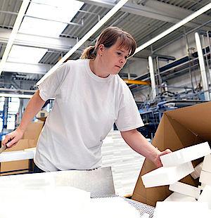 Sächsische Schweiz-Osterzgebirge, Heimkehrerbörse, Unternehmen, Unternehmenssuche, Branche, Firmen, Wirtschaft, Arbeit, Bewerbungn, ,